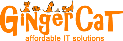 new ginger cat logo1